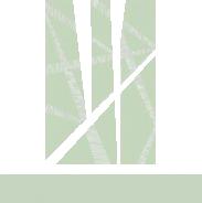 crashpaper logo